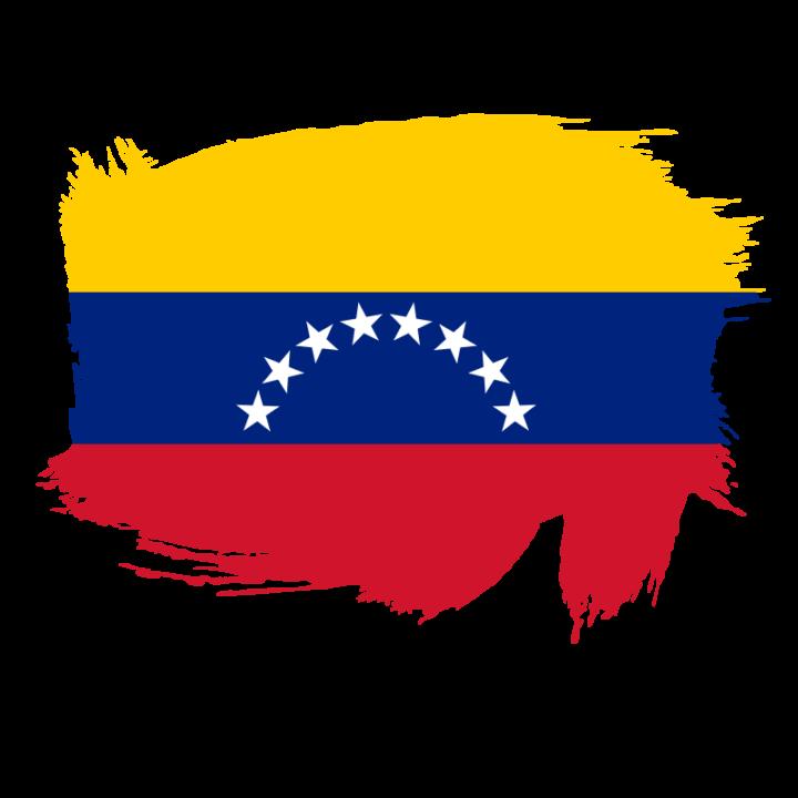 Joint UPR submission Venezuela